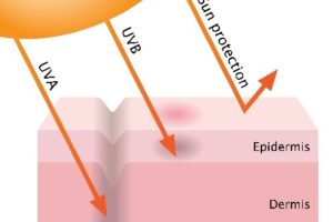 广谱防护是抵挡UVA和UVB的关键要素,这两种